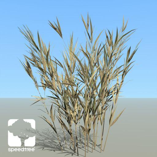 Wheat_Desktop_HarvestST