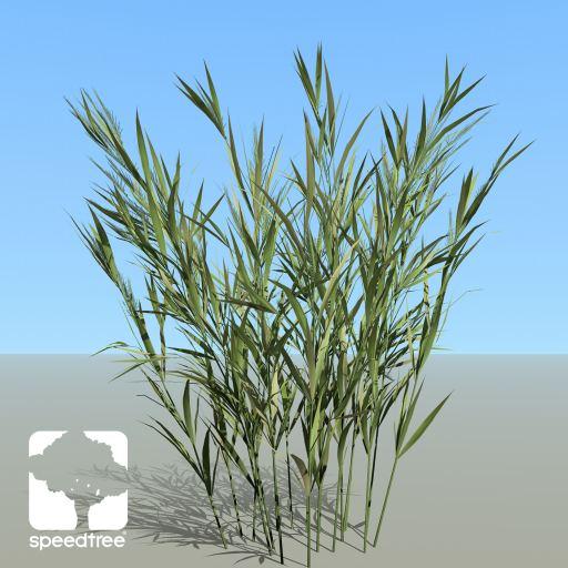 Wheat_Desktop_springST