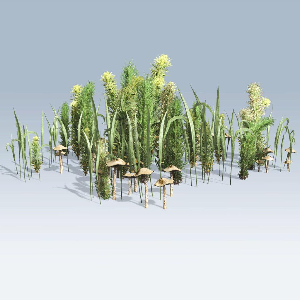 Mixed Greens (v6)