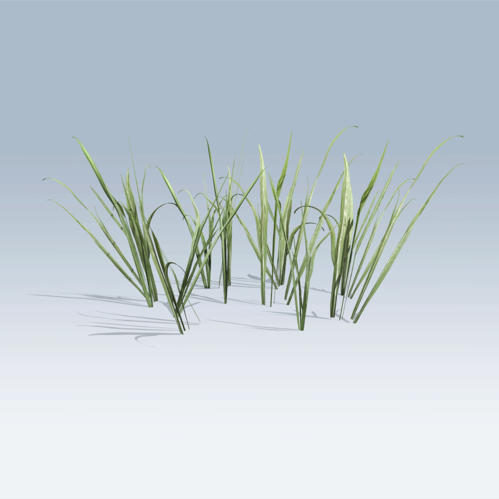Plantation Grasses (v6)