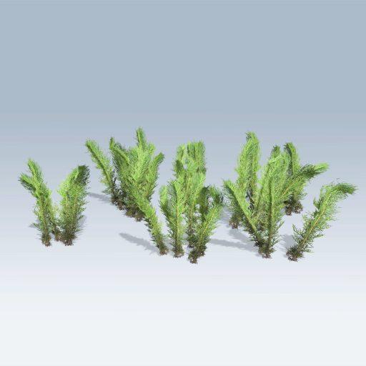 Tumble Grass (v6) 3