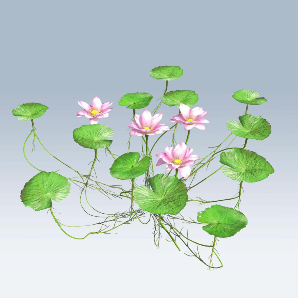 Lotus Flower V6 Speedtree