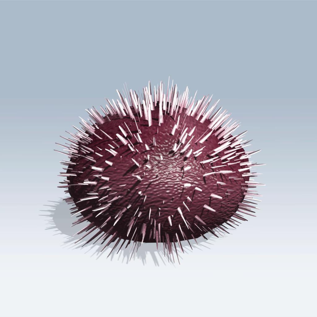 Purple Sea Urchin (v6)