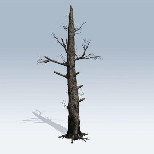 Burnt Tree (v6) 1