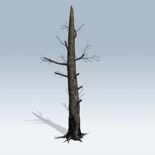 Burnt Tree (v6) 2