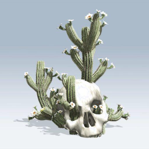Cactus In Skull (v6) 1