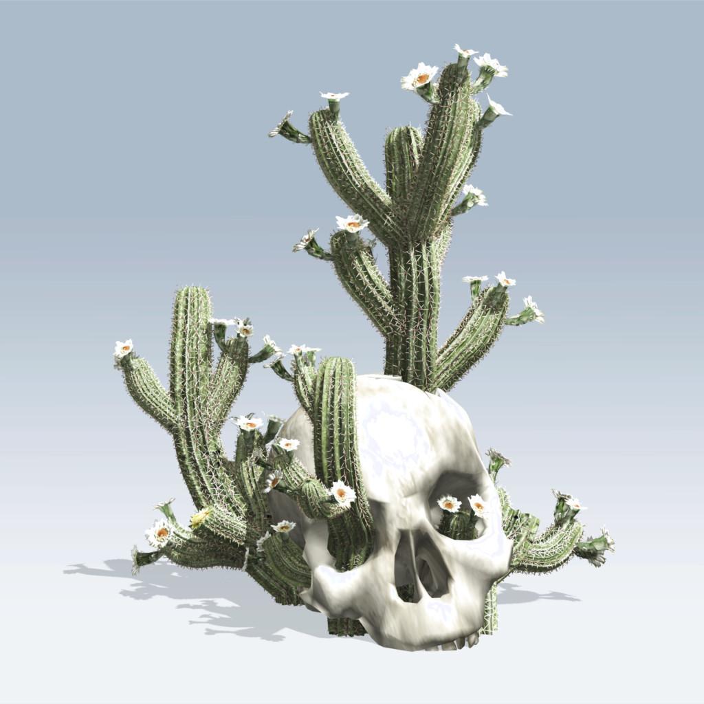 Cactus In Skull (v6)