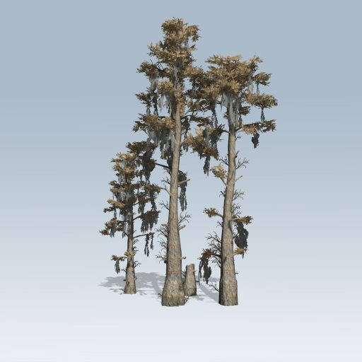 BaldCypress_Cluster_Fall_Low