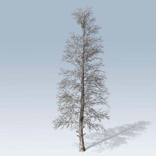 Blue_Spruce_Mobile_Bare