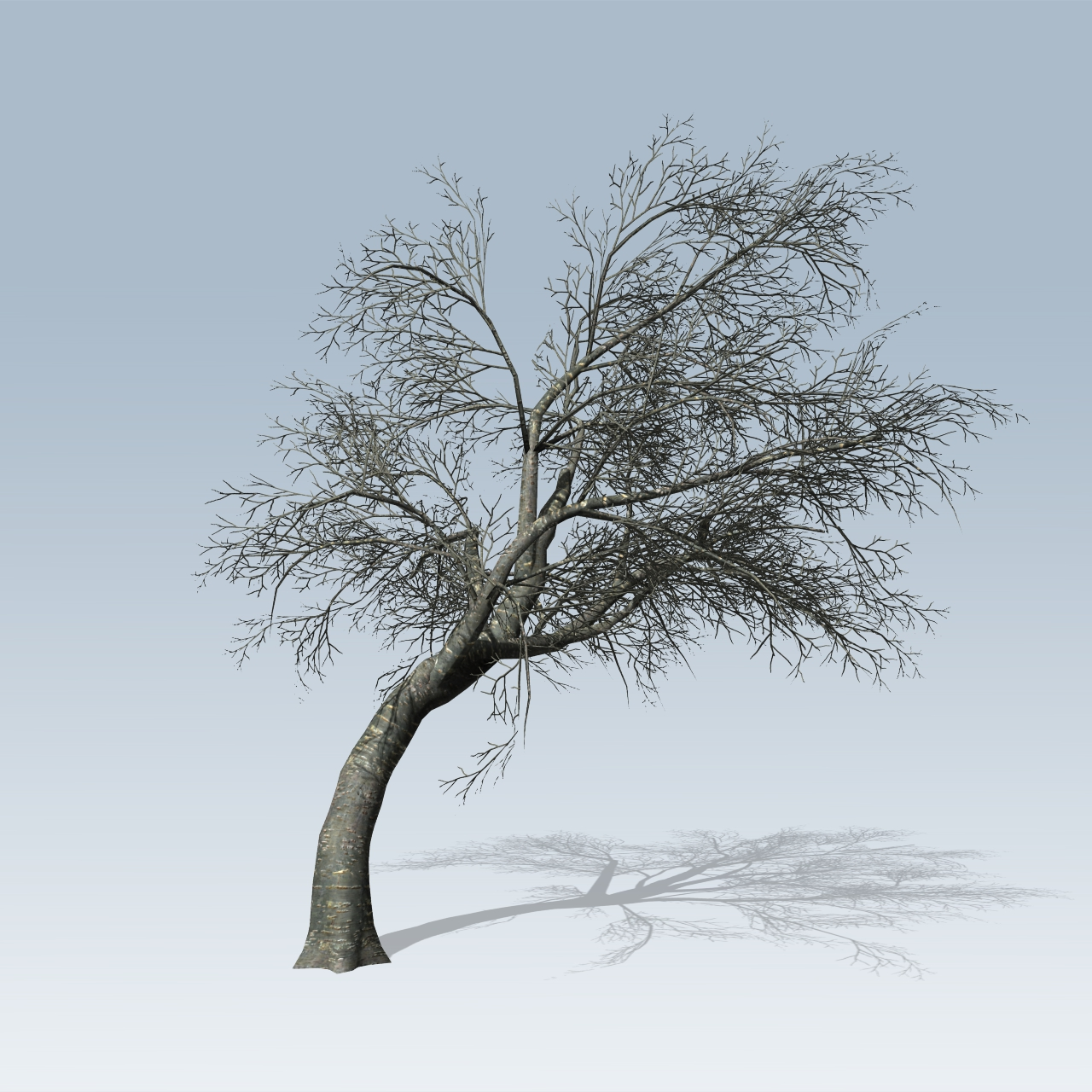 cherry tree  speedtree