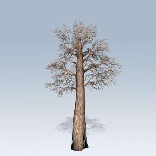 Giant_Redwood_Mobile_Bare