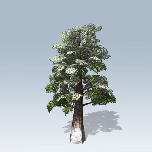 Giant_Redwood_Mobile_Winter