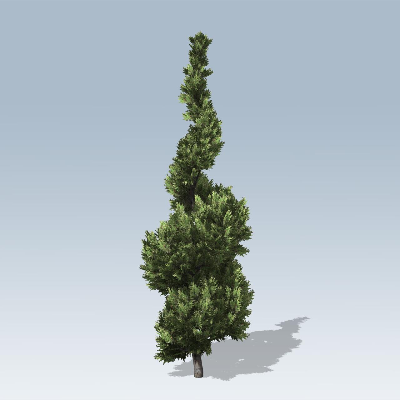 hollywood juniper  speedtree