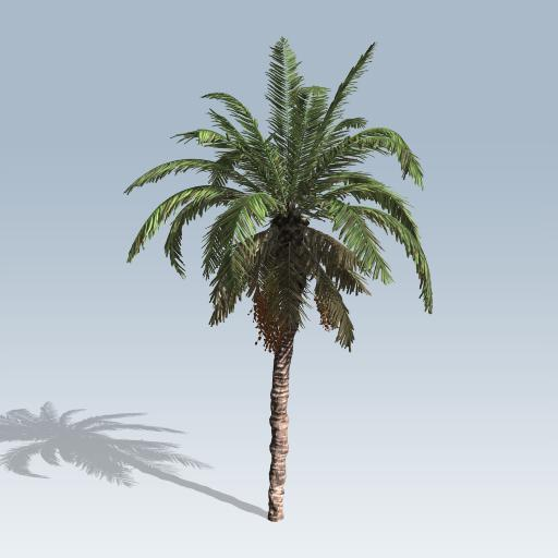 Date Palm V7 Speedtree