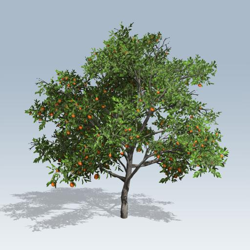 Peach Tree V7 Speedtree