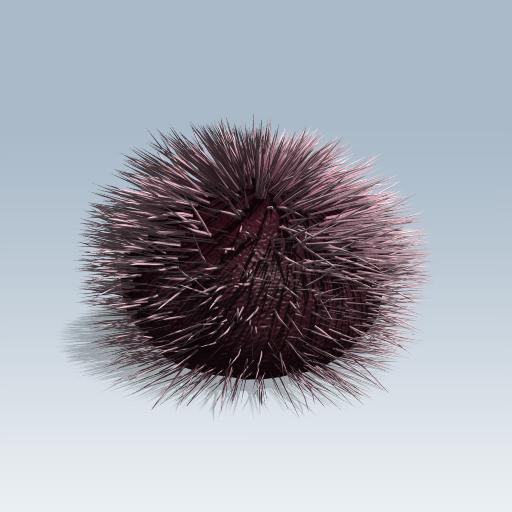 Purple Sea Urchin 1