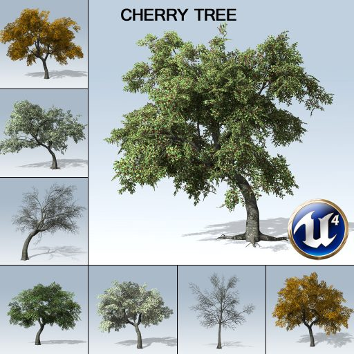 cherry_with_variations