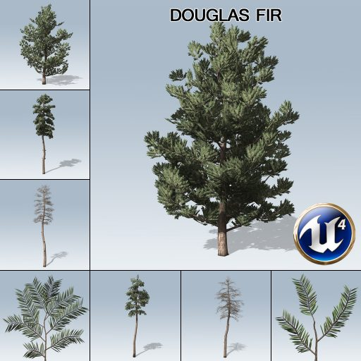 douglas_fir_product_with_7_variations