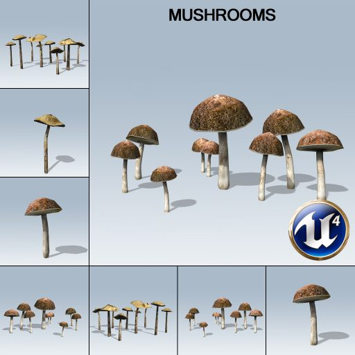 mushrooms_product_with_7_variations