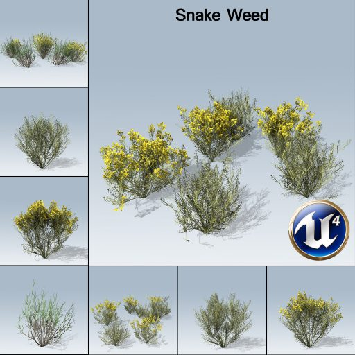 snake_weed_product_with_7_variations