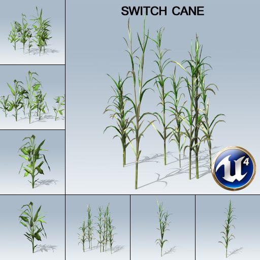 switch_cane_product_with_7_variations