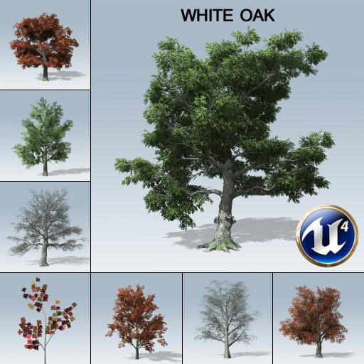 white_oak_product_with_variations