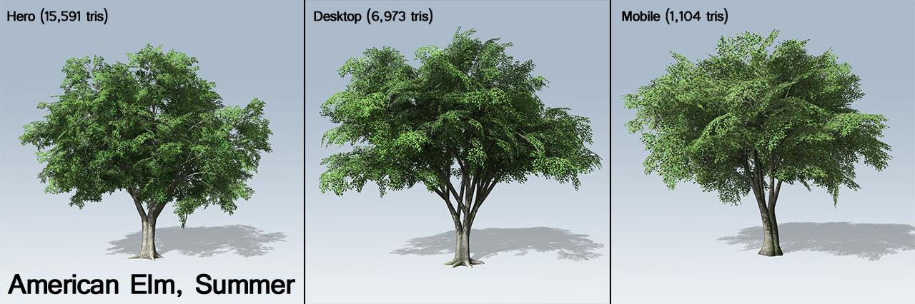 American elm ue4 speedtree for American elm