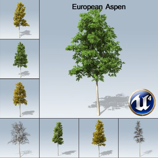 European_Aspen_product_with_7_variations