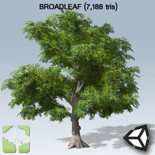 Broadleaf_sample