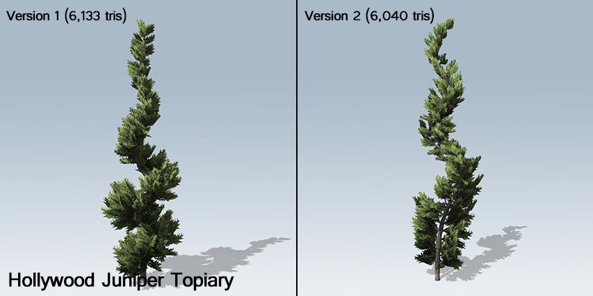 Hollywood_Juniper_Topiary_banner