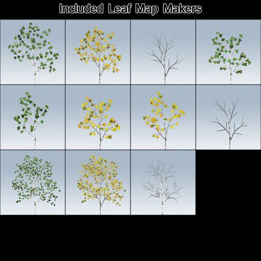 European_White_Birch_leaf_makers