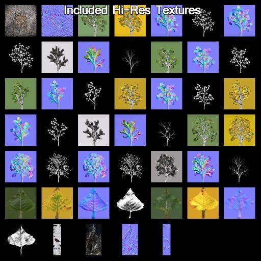 European_White_Birch_textures