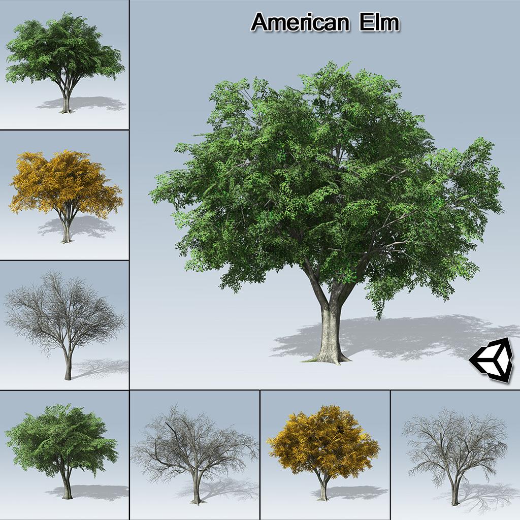 American elm unity speedtree for American elm