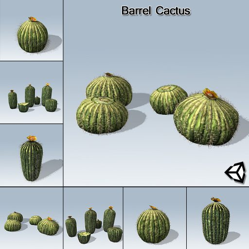 Barrel_Cactus_with_7_variations