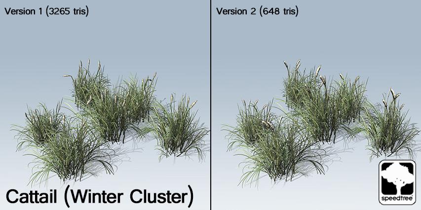 Cattail_Winter_Cluster _banner