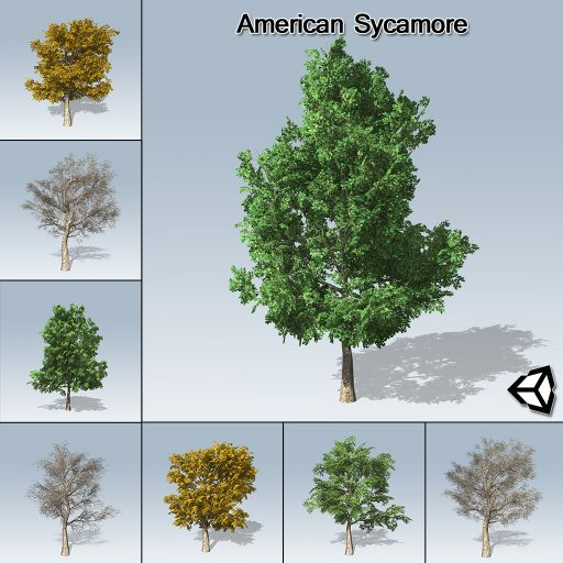 americansycamore_product_with_7_variations