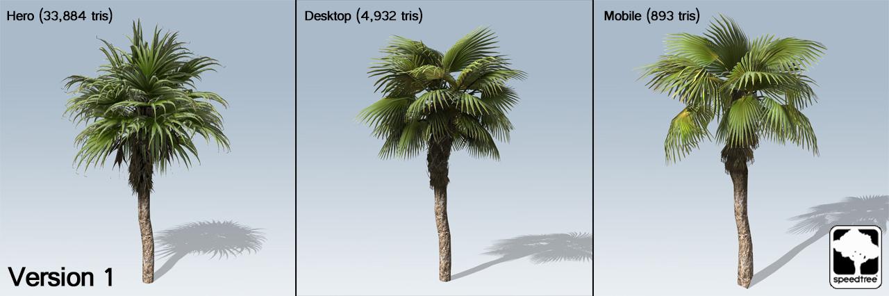 fan palm. chinese_fan_palm_textures. chinese_fan_palm_version1. chinese_fan_palm_cluster. chinese_fan_palm_version2 fan palm