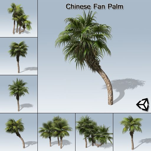 chinese_fan_product_with_7_variations