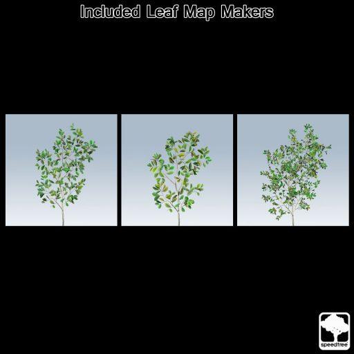 chinesebanyan_leaf_makers