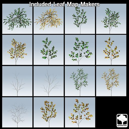 european_Beech_leaf_makers