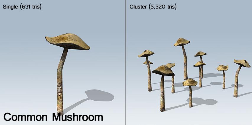 mushroom_banner