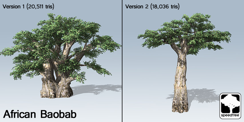african_baobab_banner