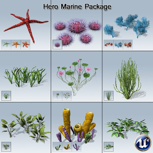Hero_Marine_Package_product