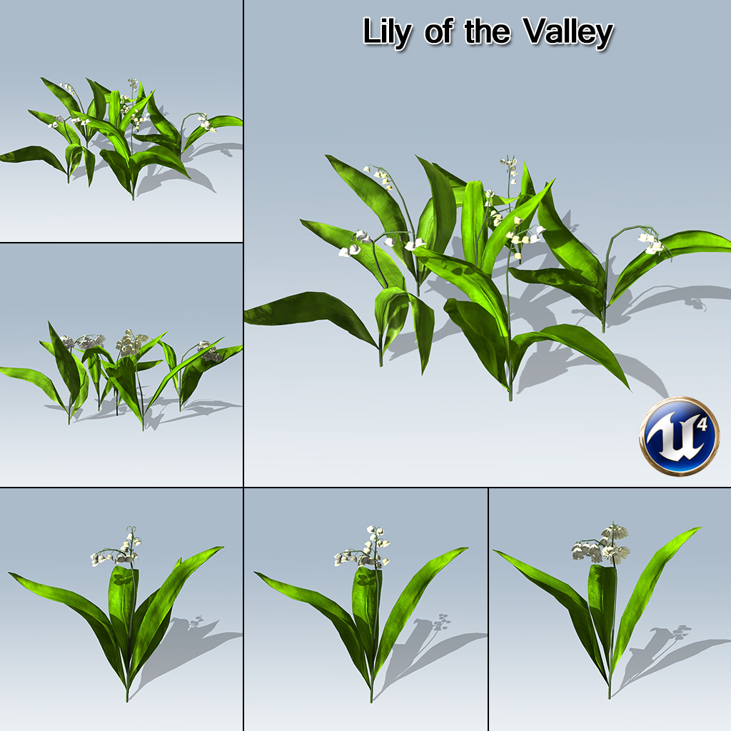 lily of the valley ue4 speedtree. Black Bedroom Furniture Sets. Home Design Ideas