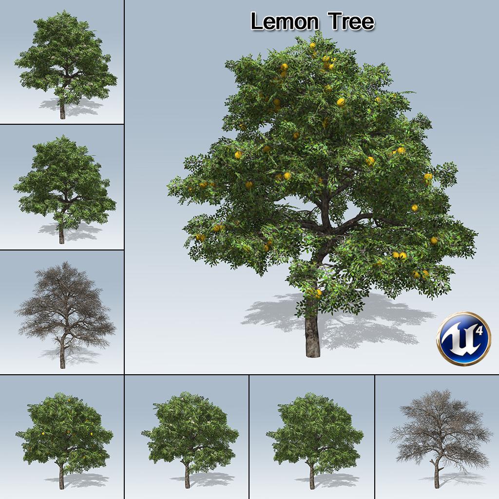 lemon tree ue4 speedtree store