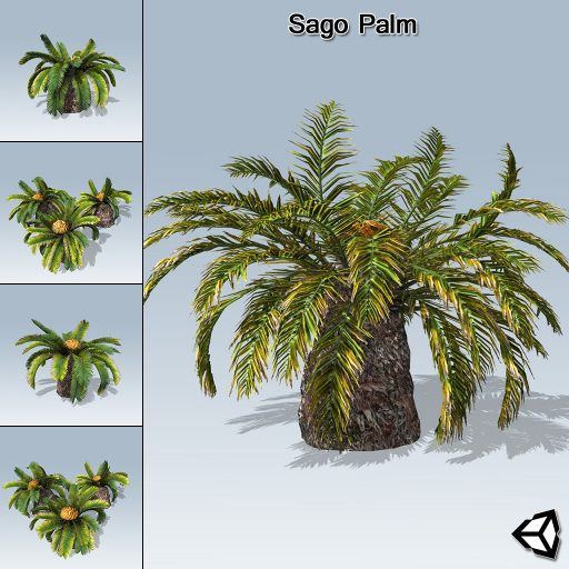 Sago_Palm_product_with_7_variations