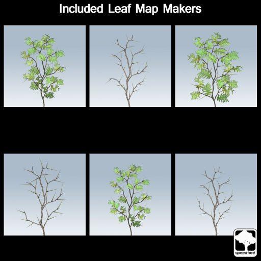 acacia_leaf_makers