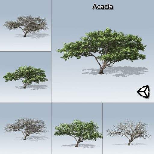 acacia_product_with_7_variations