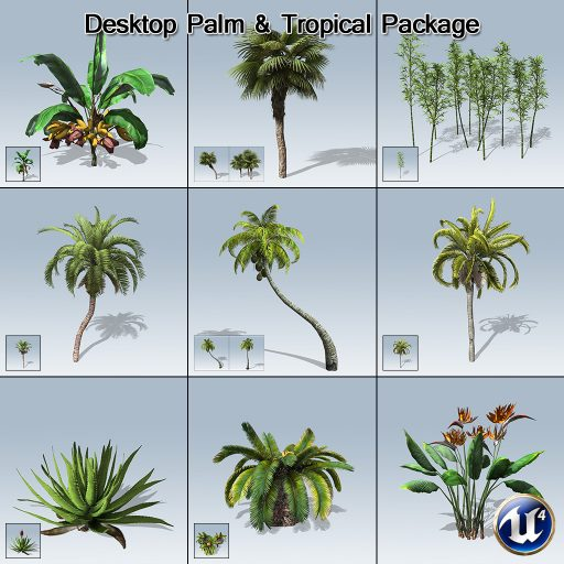 desktop_palm_product_with_7_variations