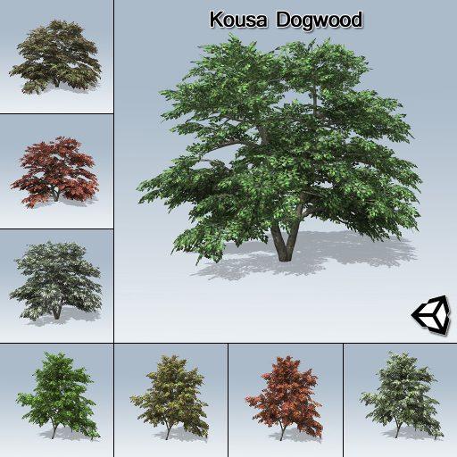 kousa_dogwood_product_with_7_variations